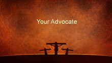 Your Advocate