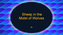 Sheep in the Midst of Wolves